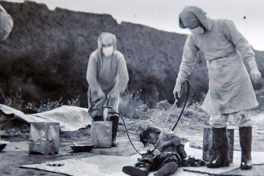 Unit 731 Germs