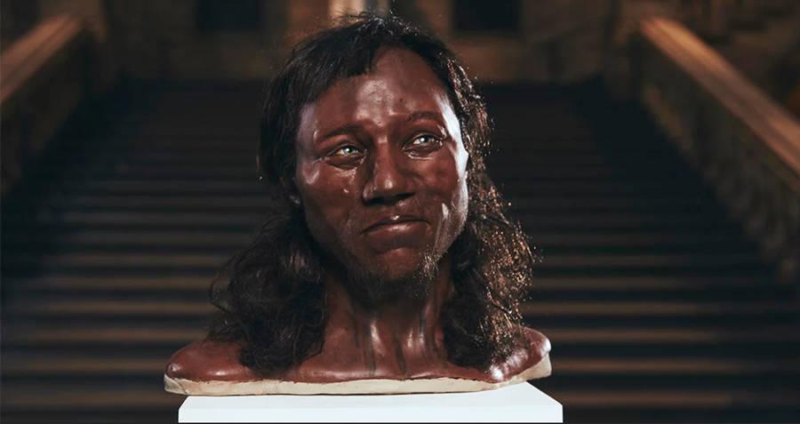 Bust Of Cheddar Man