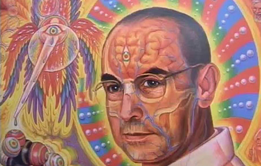 Bicycle Day — Albert Hofmann And The Accidental Origins Of LSD ...