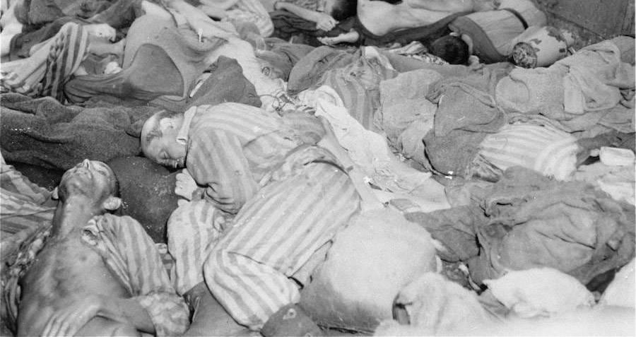 Dachau Dead Bodies